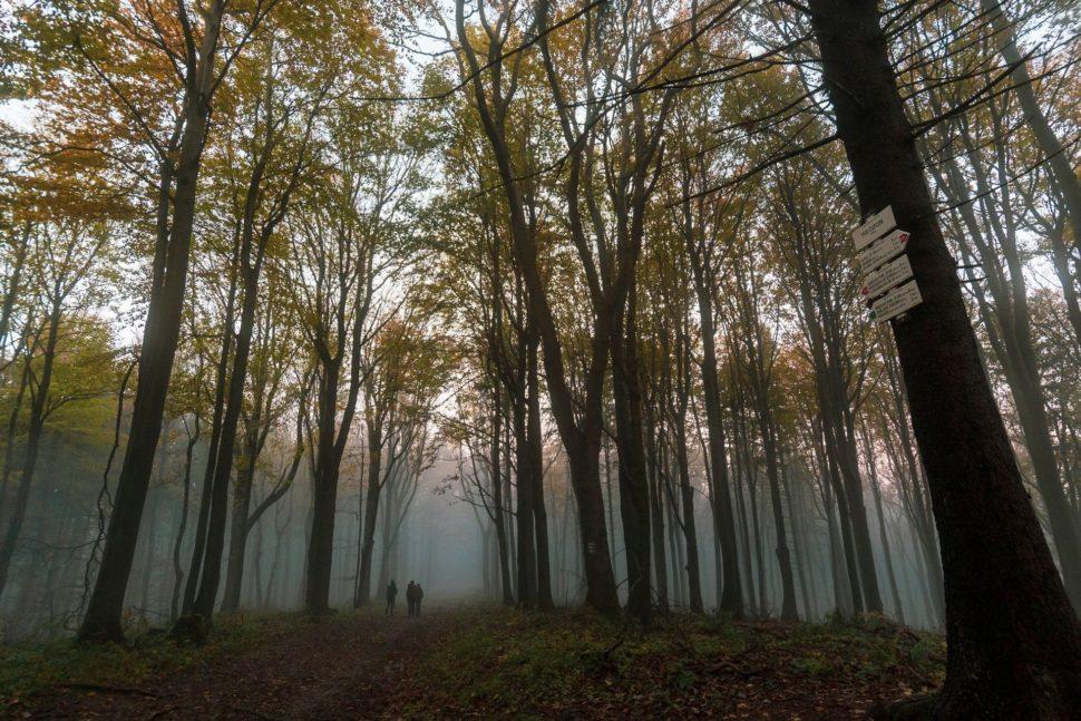 Bílé Karpaty - nad mořem mraků