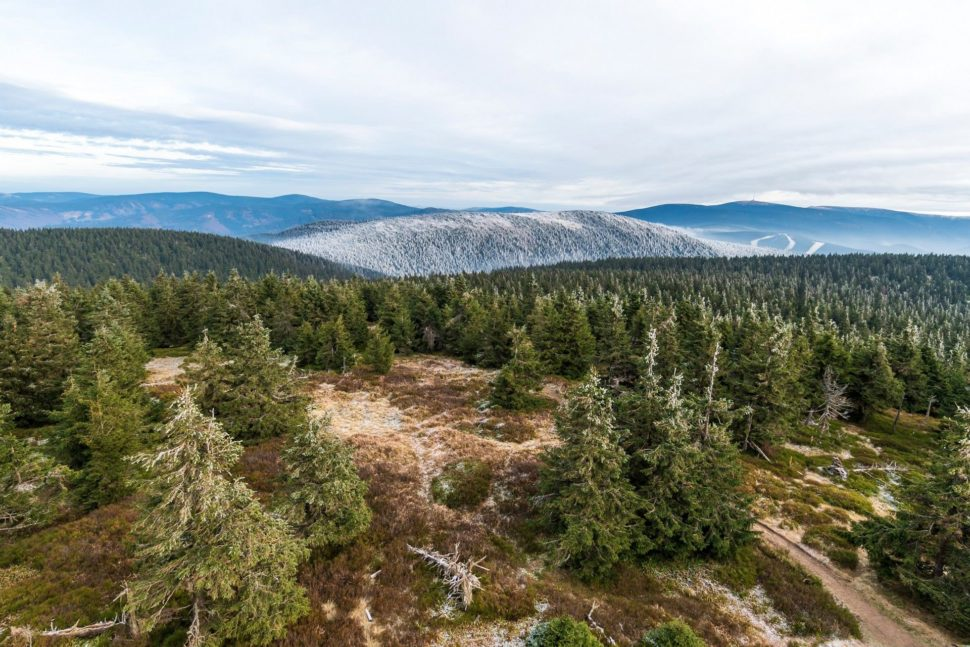 40 km vymrzlými Jeseníky